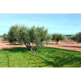 Malla Recolecion 6X12Mt Aceitunas Natuur Verde